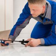 Indianapolis and Chicagoland pest control exterminator